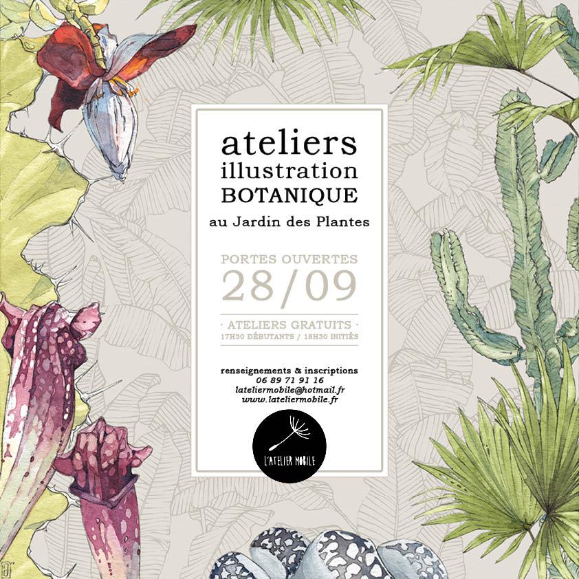 atelier d'illustration botanique | portes ouvertes
